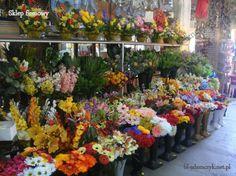 bl-adamczyk.net.pl - umělé květiny, svíčky, koronární pražce, výrobky z plastů, sušené exotické, proutí, ozdobné předměty, věnce a kytice, věnce, svatební dekorace