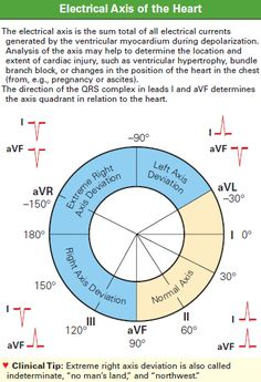 ICK: Electrical Axis of the Heart —