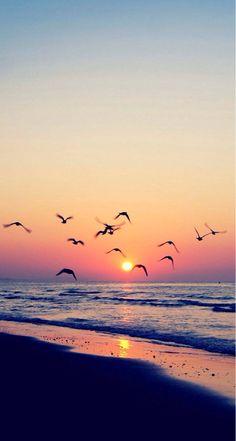 The beautiful sea