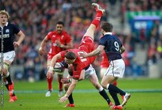 15 02 15 - Scotland v Wales - RBS 6 Nations - Dan Biggar of Wales crashes over Finn Russell of Scotland . Ouch