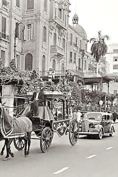 - Old Egypt ./tcc/