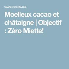 Moelleux cacao et châtaigne   Objectif : Zéro Miette!