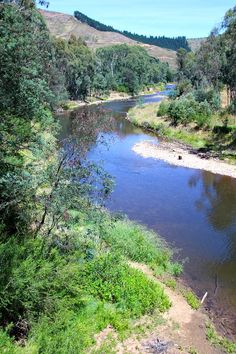 What to do in Bright, Victoria, Australia. A great place to bicycle, wonderful tracks.