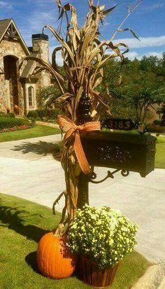 Front yard/ mailbox, decorations for Halloween