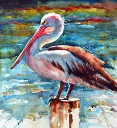 pelican acrylic painting - Google Search …