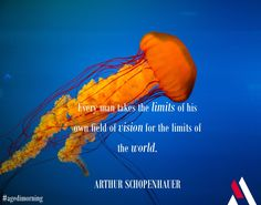 Everybody fails. Since the day we're born…Embrace your limits! #agedimorning #quoteoftheday #schopenhauer #agedispirits  #vision