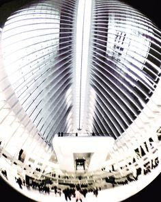 #MacriSeeks: The #WTCMall just opened in August, but we're never gonna get tired of this phenomenal design #worldtradecenter #architecture #bethmacri #fisheye #photojojo