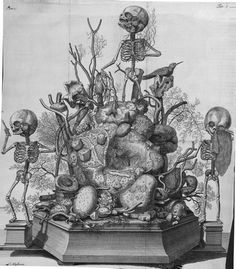 Morbid Anatomy: Announcing a New Virtual Museum Dedicated to Frederik Ruysch (1638-1731): Anatomical Artist, Museologist, Morbid Anatomy Patron Saint!