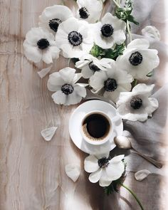 Coffee SEO is for those Coffee Lovers interested in coffee branding, & digital marketing. Coffee Milk, Coffee And Books, I Love Coffee, Milk Tea, Coffee Cafe, Coffee Shop, Brown Coffee, Bouquet Cadeau, Good Morning Coffee