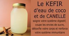 Coconut Water Kefir Can Help Heal The Gut, Improve Immune Function And Prevent Cancer. (Coconut Water Kefir Can Help Heal The Gut, Probiotic Drinks, Detox Drinks, Healthy Drinks, Healthy Tips, Healthy Food, Healthy Smoothies, Kefir Probiotic, Healthy Detox, Smoothie Recipes
