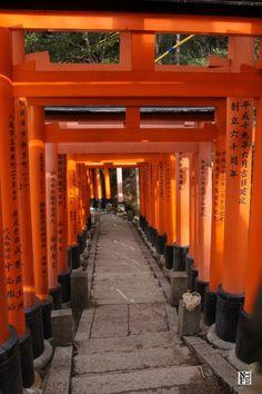 Up and down the road, Fushimi Inari Shrine, Kyoto, Japan