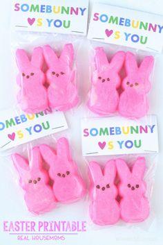 Somebunny Loves You Easter Printable