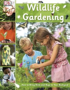 A good book for interoducing children to wildlife gardening and building bug hotels etc. Insect Hotel, Bug Hotel, Dk Books, Good Books, Dk Publishing, Little Red Hen, Gardening Books, Animal Books, Plant Nursery