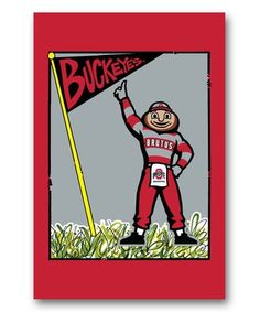 Loving this Ohio State Buckeyes Mascot Flag on #zulily! #zulilyfinds