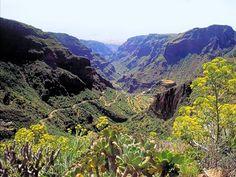 Barranco Guayadeque | Gran Canaria | Dunas Hotels & Resorts