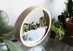 Plant Bags, Dark Mountains, White Plants, Snow Globes, Wood, Home Decor, Decoration Home, Woodwind Instrument, Room Decor