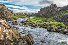 A flowing river between two tectonics plates in Thingvellir (Þingvellir) National Park, a UNESCO Heritage Site in Iceland. Tours In Iceland, Iceland Travel, Thingvellir National Park, See The Northern Lights, Adventure Tours, Most Visited, Day Tours, National Parks, Nature