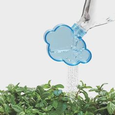 :D genial para regar las hiervas aromáticas que cultivas en casa!