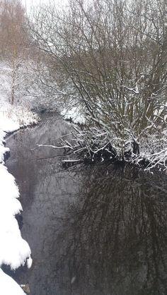 More winter wonderland