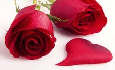 Feliz día de San Valentín !!