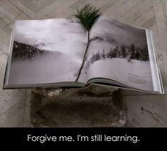 Forgive me. I'm still learning. - Perdonami. Sto ancora imparando. • florist donaflor Forgive Me, Be Still, Forgiveness, Learning, Studying, Teaching, Onderwijs, Letting Go