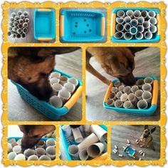 DIY dog games