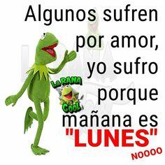 Amor, Tomorrow Is Monday, Happy Monday, I Need A Hug, Be Nice, Haha, Jokes, Best Good Morning Images