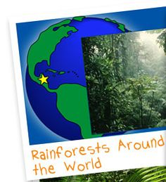 Layers of the rainforest earth day song for children education rainforest alliance kids corner virtual trips e storybooks species profiles fandeluxe Images