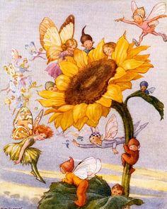 Cute Sunflower Fairies Vintage Artwork.