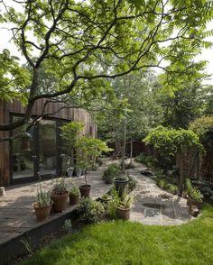 Tree House / 6a Architects - United Kingdom
