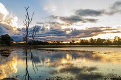 Manaos, el corazón de Amazonia | eHow en Español