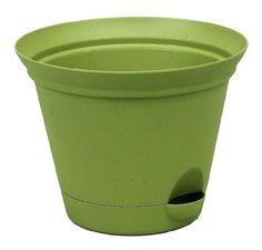 Misco 1154/3-060 Flare Self Watering Planter, 11.5-Inch, Avocado Misco http://www.amazon.com/dp/B0014GV3HI/ref=cm_sw_r_pi_dp_KJLuvb1BZPR3F