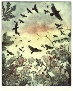 RING-A-ROOKS - Sioban Coppinger etchings