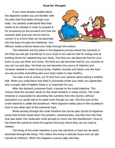 The Human Digestive System and Food Lesson & Worksheet Set Comprehension Worksheets, Reading Comprehension, Teaching Activities, Teaching Reading, Learning Psychology, Human Body Unit, Grammar Rules, Christmas Coloring Pages