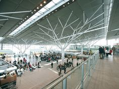 Sticks and Stones and all that Matter | Forum | Archinect