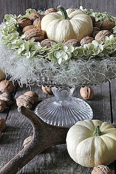 White pumpkins with hydrangea and walnuts - cool mix