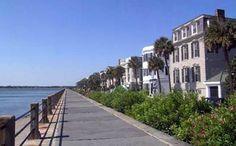 Viagens & Imagens: Estados USA: South Carolina, o Estado da Palmeira.