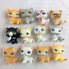 Littlest Pet Shop LPS Lot of 12 Cats Short Hair Tiger Striped Race About Orange