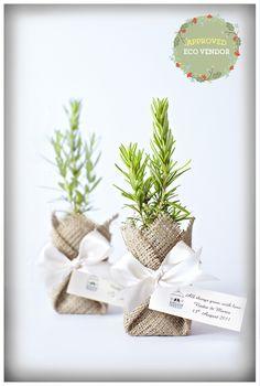 Eco Brides - http://ecobrides.com.au/wp/eco-approved-flourish-bomboniere/