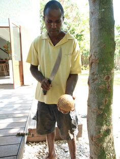 Coconut, a staple food of the islands and here at the Villa we are lucky to have Sammi to crack open one or two every day. The fresh water, the quencher of thirst. Gold Coast Queensland, Culinary Classes, Food Staples, Vanuatu, Fresh Water, Islands, Paradise, Paleo, Villa