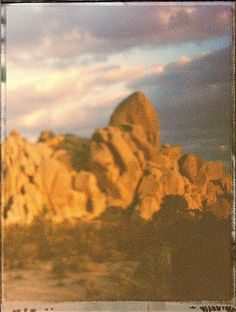 A film image shot with a Holga plastic camera in the Joshua Three National Park.