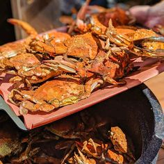 Blue Crab Recipes, Seafood Recipes, Blue Claw Crab, Steamed Crabs, Crab Feast, Crab House, Crab Cakes, Fish And Seafood