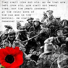 Remberance Sunday, Lest We Forget Remberance Sunday, Lets We Forget, War Tattoo, Fallen Officer, Battle Of The Somme, Pray For Peace, Fallen Heroes, Remembrance Day, Flowers Nature