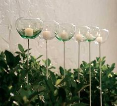 Glass Garden Votive Holder