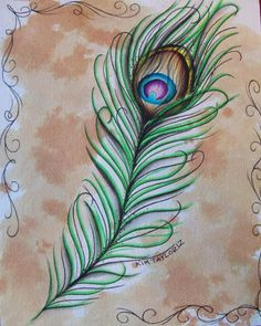 peacock feather original 8x10 water color painting by kimmythehun, $25.00