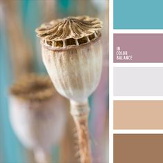 Original solution for decoration of bedroom. The combination of gentle beige, pink and lilac tones with a brighter turquoise shade is pleasant to t… … Palettes Color, Colour Pallette, Colour Schemes, Color Combos, Color Patterns, Color Harmony, Color Balance, Deco Violet, Coordination Des Couleurs