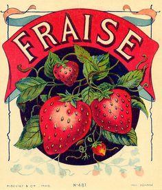 Vintage Packaging, Vintage Labels, Vintage Ads, Vintage Prints, French Vintage, Vintage Posters, Free French, Papel Vintage, Vintage Paper
