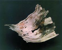 Schale aus Silberdraht gelötet
