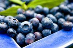 Le blogue officiel du Saguenay−Lac-Saint-Jean Official Blog , Archive » La meilleure tarte aux bleuets