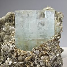 Aquamarine on Muscovite. Find this and other collectibles at CuratorsEye.com.